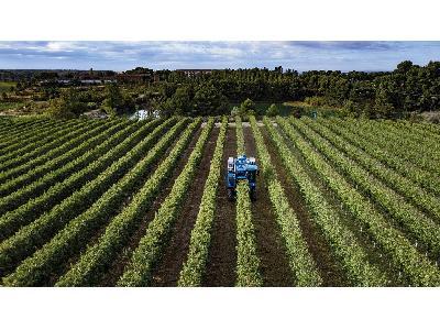 New Holland presenta la recolectora Braud 11.90 X Multi para plantaciones superintensivas